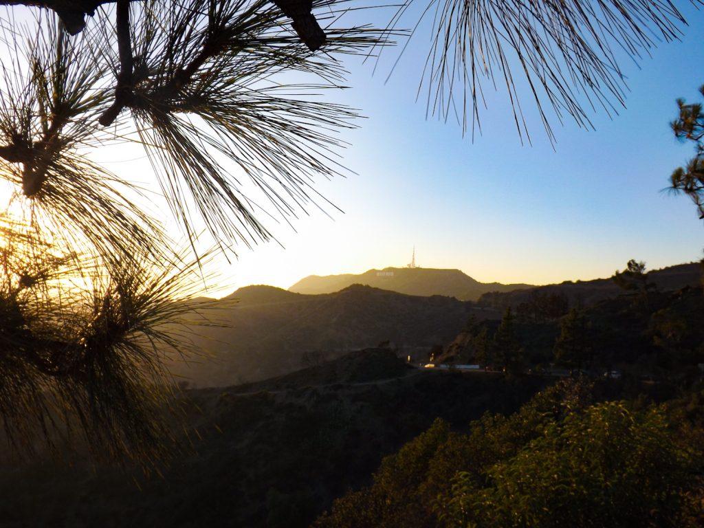 Hollywood Hills met in de verte de Hollywood Sign